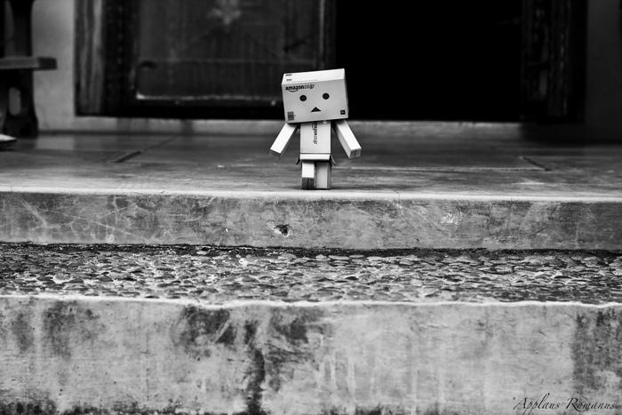 Danbo keluar rumah by ARO
